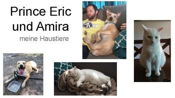 Meine Haustiere Slides presentation