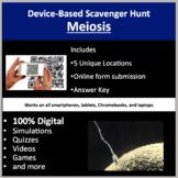 Meiosis – A Digital Scavenger Hunt Activity