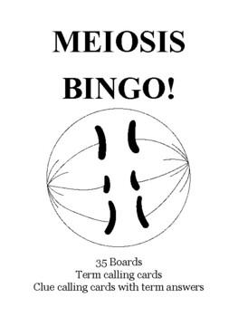 Meiosis BINGO!