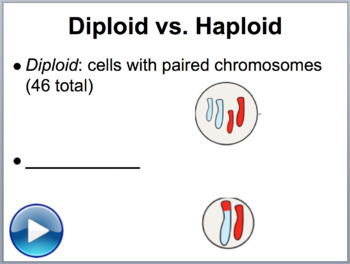 Meiosis - Biology PowerPoint Lesson
