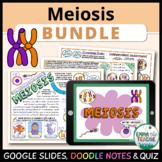 Meiosis Bundle - Digital Learning