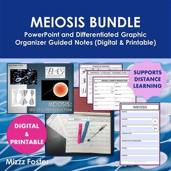 Meiosis Bundle: Power Point and Graphic Organizer for INB