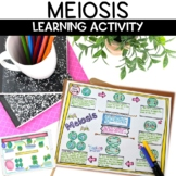 Meiosis Cell Division Nonfiction Reading and Sketch Note Activity