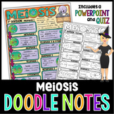 Meiosis Doodle Notes | Science Doodle Notes