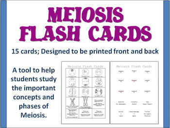 meiosis flash cards by biology zoology forensic science tpt. Black Bedroom Furniture Sets. Home Design Ideas