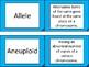 Meiosis Flashcard Definitions!