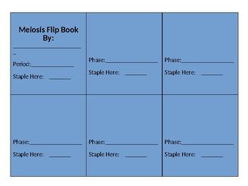 Meiosis Flip Book