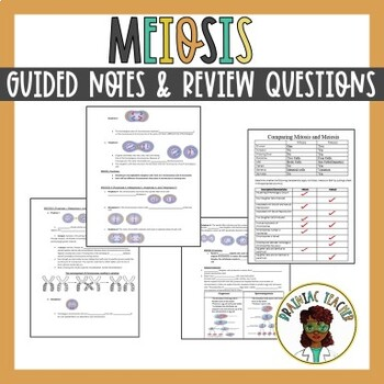 Meiosis Guided Notes