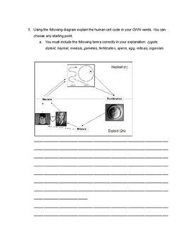 Meiosis Introduction/Review Worksheet