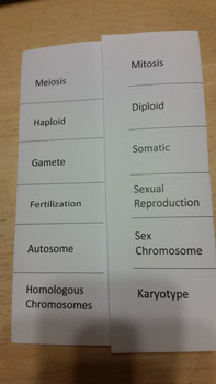 Meiosis Introduction Vocabulary