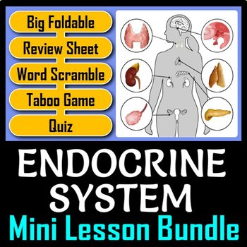 Endocrine System Lesson Bundle {Editable and Options for Differentiation}