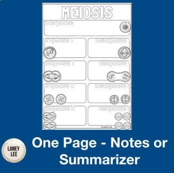 Meiosis One Pager