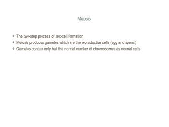 Meiosis PowerPoint
