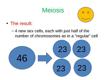 Meiosis PowerPoint presenation