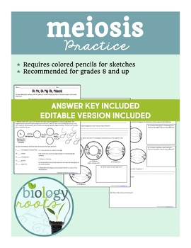 Meiosis Practice- Homework or Classwork