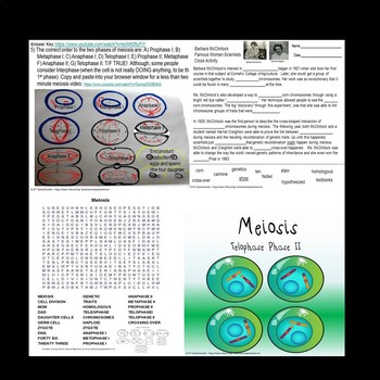 Meiosis Biology Life Science Quiz Overview Part 1 SPED/Autism/OHI/ELL