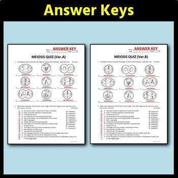 Meiosis Quiz - Two Versions {Editable}