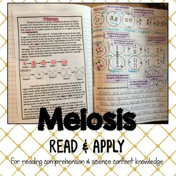 Meiosis Reading Comprehension Interactive Notebook