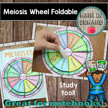Meiosis Wheel Foldable
