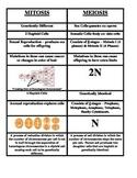 Meiosis Vs. Mitosis Cut-N-Paste