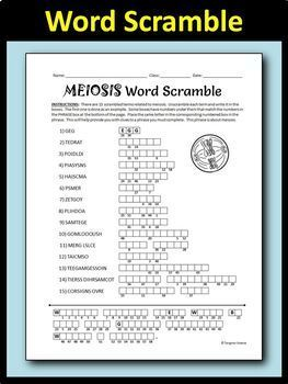 Meiosis Word Scramble Activity - Fun Solo or Group Work