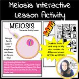 Meiosis Worksheet Activity