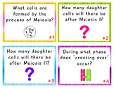 MEIOSIS and Gametogenesis TASK CARDS with Answer Key