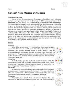 Meiosis and Mitosis Package