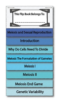 Meiosis and Sexual Reproduction Interactive Flip Book and Quiz