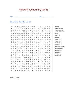 Meiosis vocabulary terms by Curtis Sensei | Teachers Pay Teachers