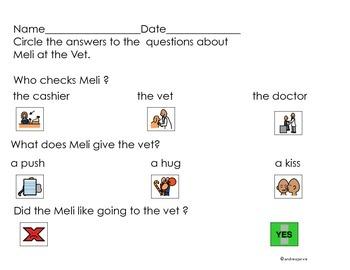 Meli at the Vet