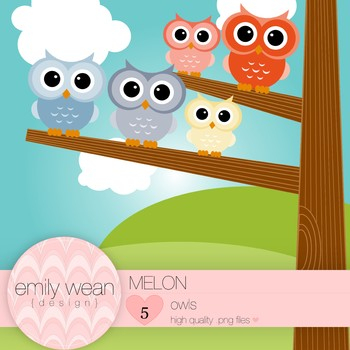Melon - Owl Clip Art