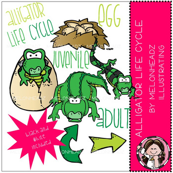 Melonheadz: Alligator Life Cycle - COMBO PACK