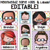 Melonheadz EDITABLE Name tags and Labels