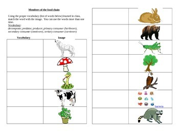 Members of the food chain