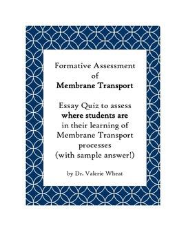 Membrane Transport Assessment