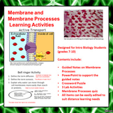 Membrane and Membrane Processes Learning Activities