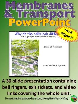 Membranes and Cell Transport Powerpoint Notes