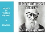Memes in World History  - A Review