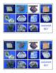 Memory Game – Sedimentary Rocks
