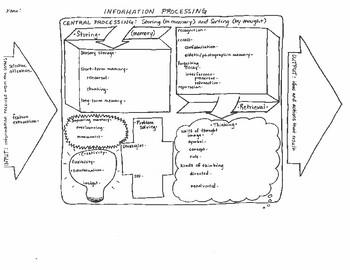 Memory Graphic Organizer