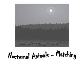 Memory and Matching Cards - Nocturnal, Jungle, and Ocean Animals