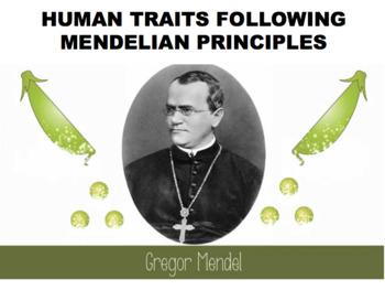 Mendel Characteristics (Editable)