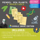 Mendel, Pea Plants, & Inheritance