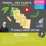 Mendel, Pea Plants, & Inheritance