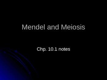 Mendel and Meosis