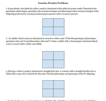 mendel powerpoint and punnett square practice 6 worksheets by lessonexpress. Black Bedroom Furniture Sets. Home Design Ideas