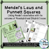 Mendel's Laws and Punnett Squares - Genetics presentation and notes pages
