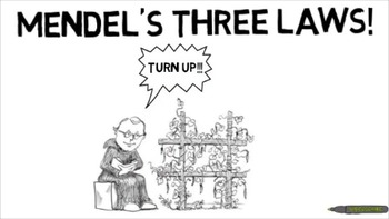Mendel's Three Laws