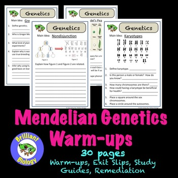 Mendelian Genetics Bell Ringers, Warm-ups, or Exit Slips {NO PREP}